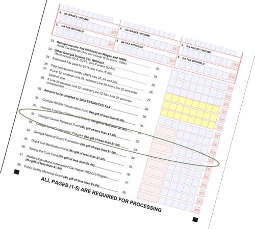 Georgia Tax Form illustration